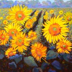 Larry-Smih-Sunflowers